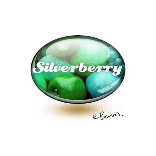 E liquide SilverBerry (eBaron Lab)