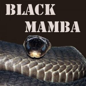 E liquide Black Mamba