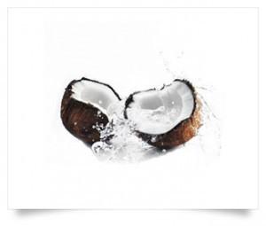 eliquide-noix-de-coco