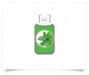 e-liquide-menthe-fraiche-vincent-dans-les-vapes