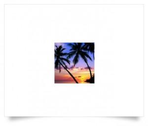 eliquide-CPN_Boca_Breeze