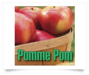 e-liquide-t-juice-pomme-pom