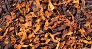 Comment la Suisse retarde le déclin de l'industrie du tabac