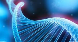 Des scientifiques américains recherchent les possibles raisons génétiques derrière la dépendance à la nicotine.