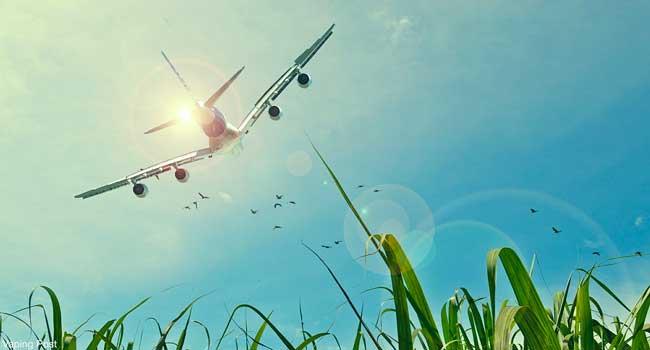 Prendre L Avion Avec Sa Cigarette Electronique Vaping Post