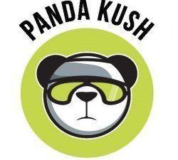CBD Panda Kush fabriqué en FR (CITY).