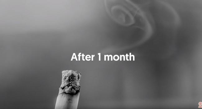 Vidéo : ce qu'il se passe dans le corps d'un fumeur lorsqu